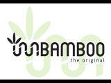 logo-bamboo